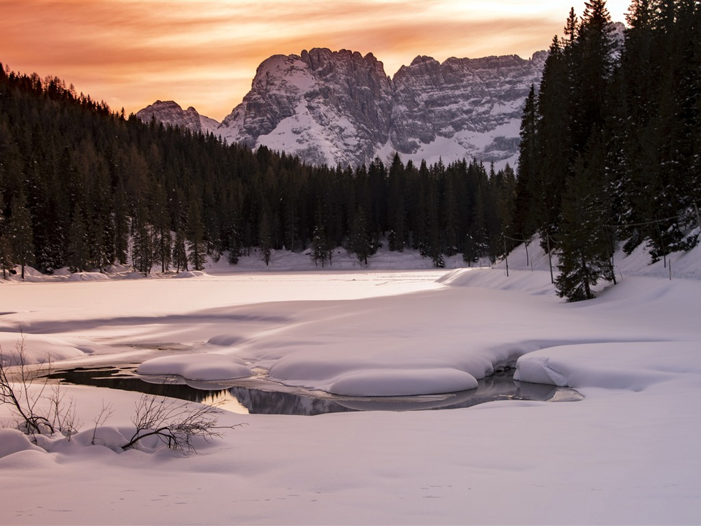 Winter jungle Alpine ice snow sunset - 1024x768 wallpaper download