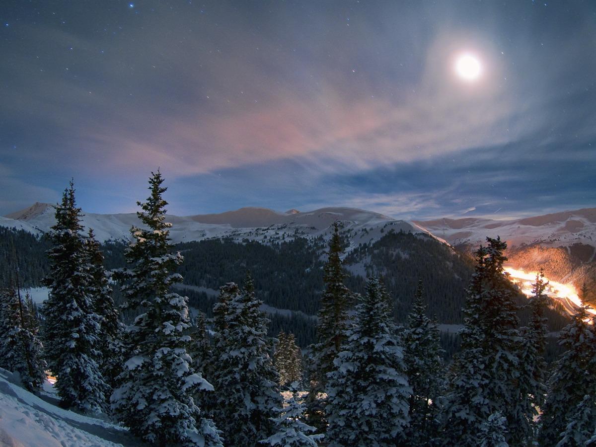 穿梭冬季森林公路 Windows 10 高清桌面壁纸预览 10wallpaper Com