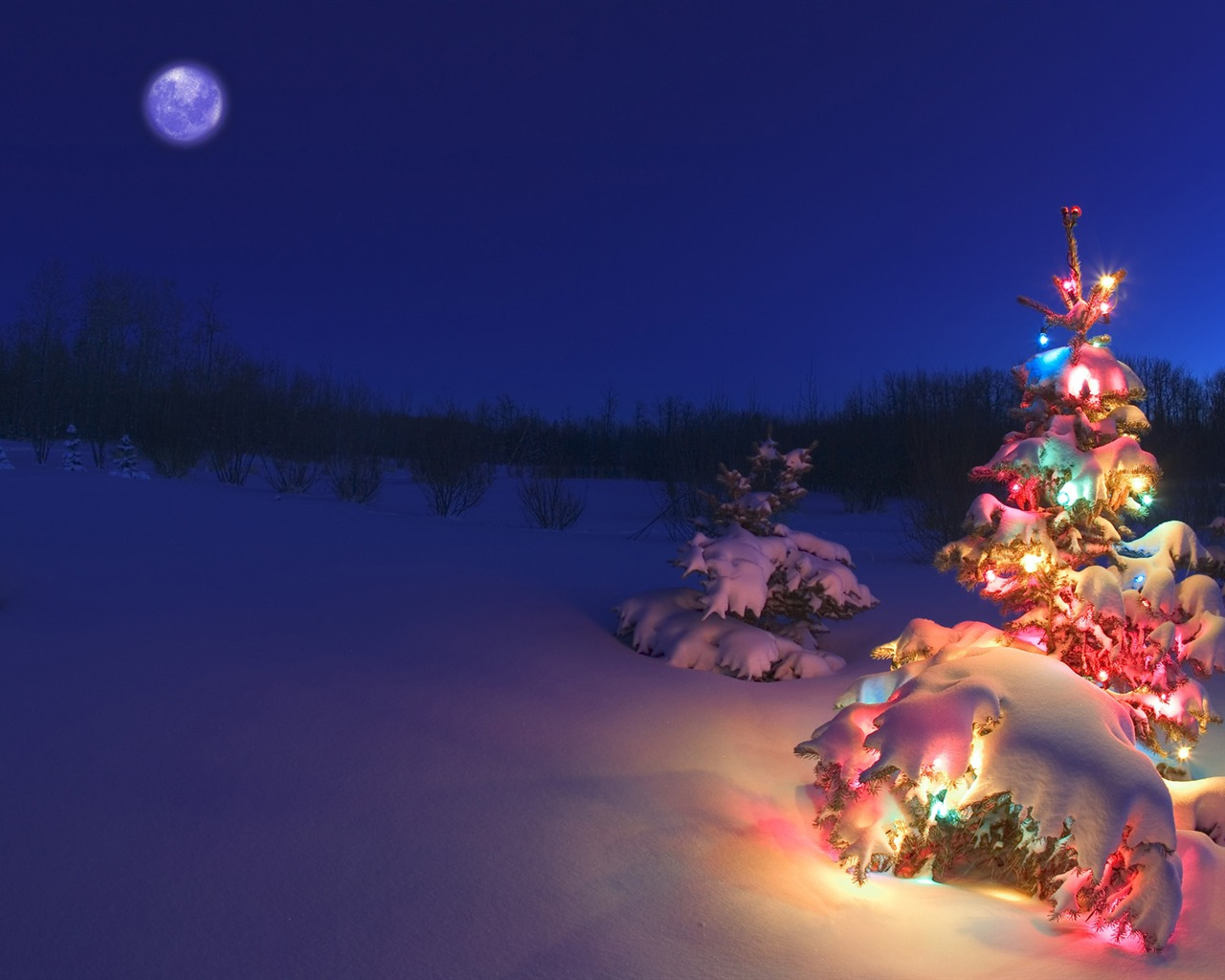 Description snow covered christmas tree lights wallpaper current size