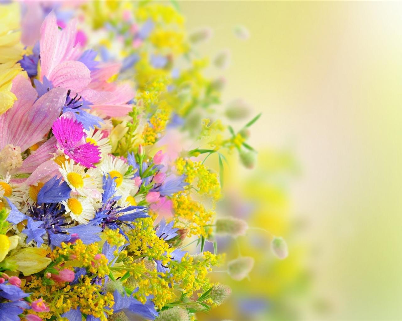 描述: 花场模糊-植物高清壁纸 当前壁纸尺寸: 1280 x 1024图片