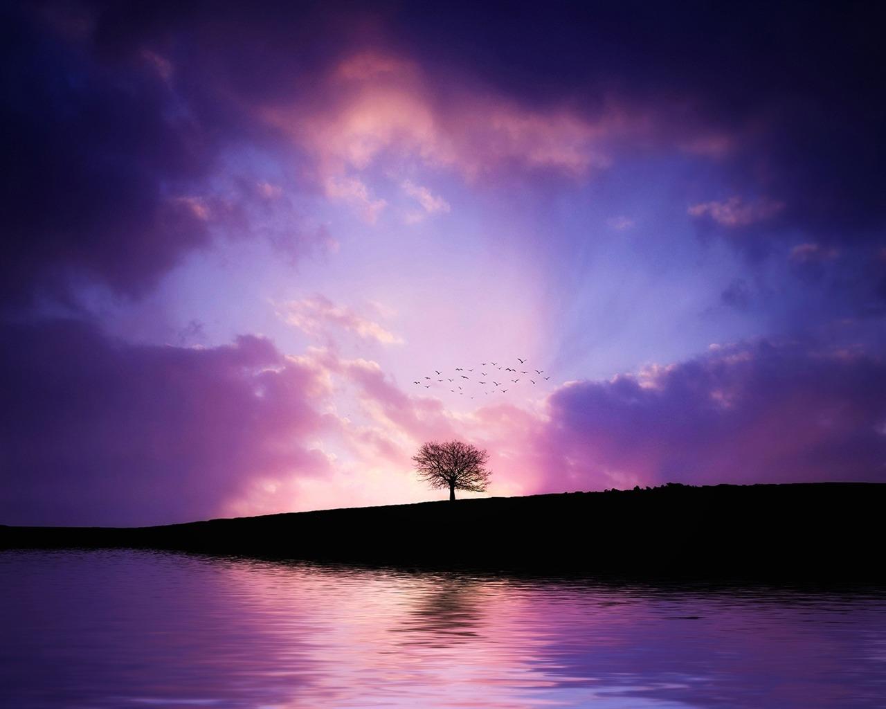 描述: 紫树日落-高清宽屏壁纸 当前壁纸尺寸: 1280 x 1024图片