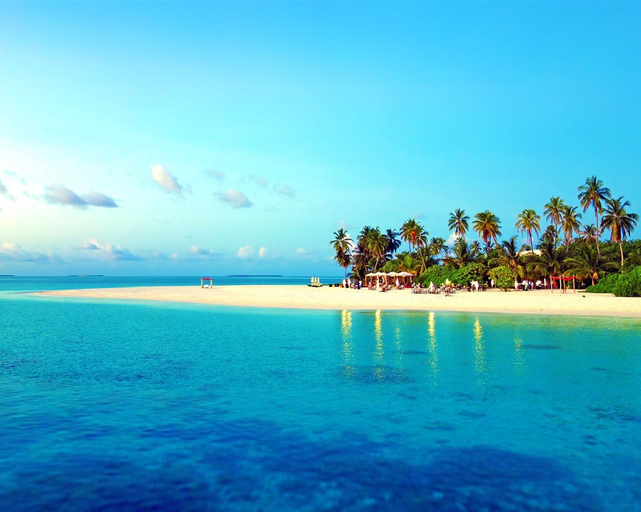 描述: 热带海滩沙夏季-自然高清壁纸 当前壁纸尺寸: 1280 x 1024图片