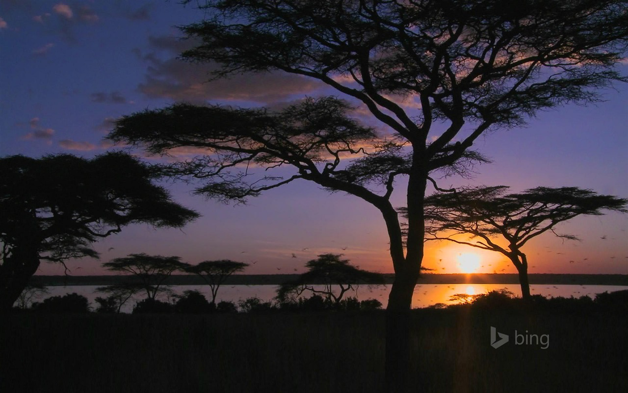 bing desktop wallpaper sunset - photo #42
