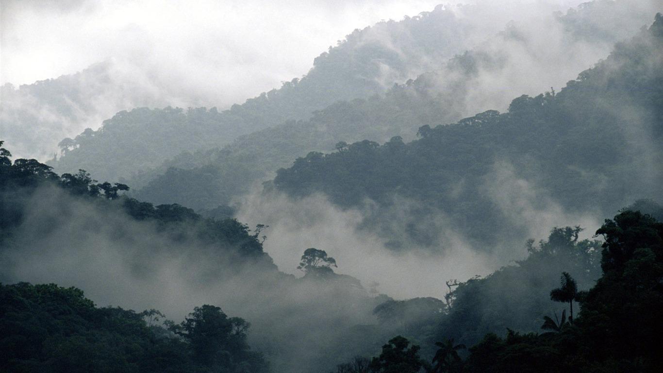 download Desarrollo Sociolinguistico del Voseo en la Region Andina de Colombia (1555 1976)
