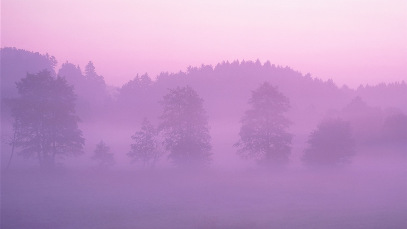 Pink_Forest_wallpaper