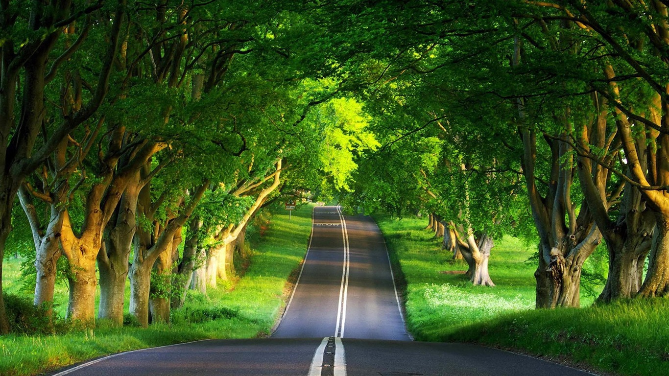 road_summer-Beautiful_natural_scenery_Desktop_Wallpapers