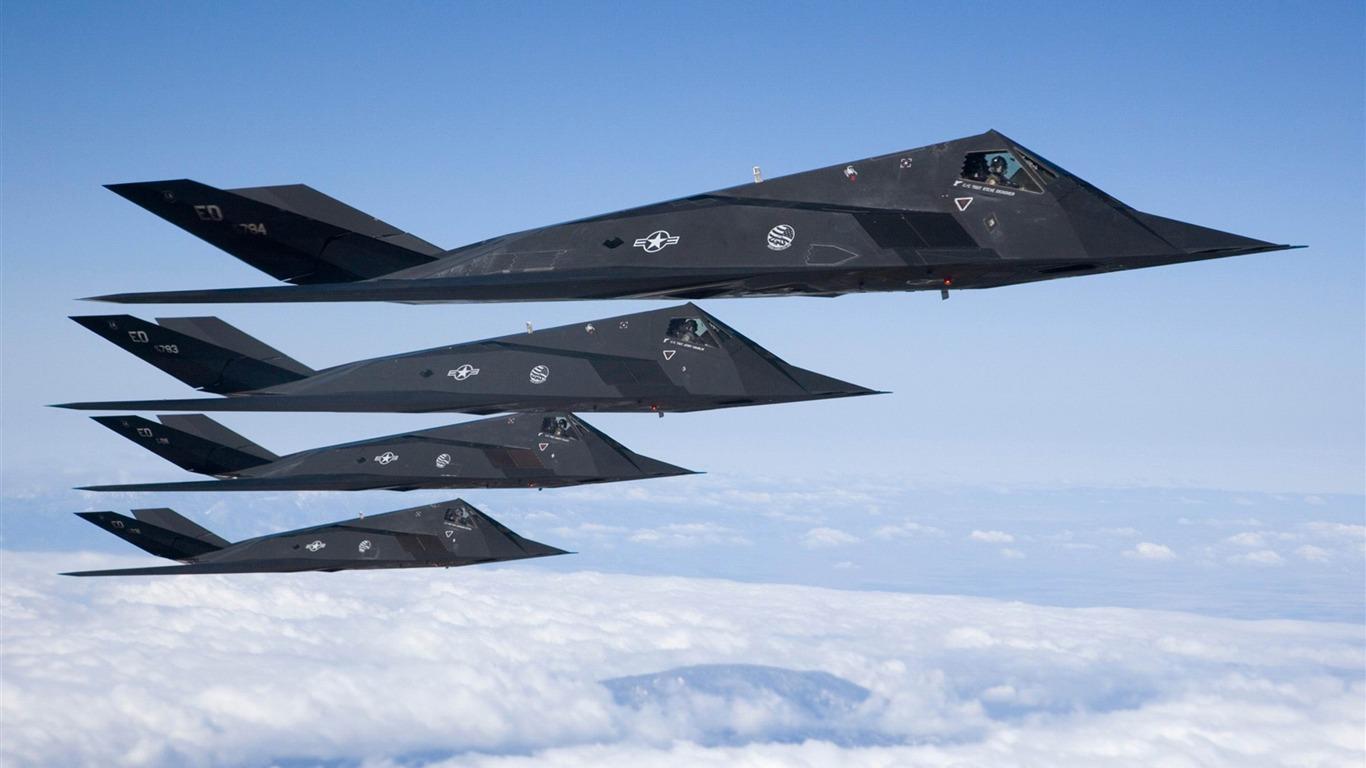 F 117 (航空機)の画像 p1_25