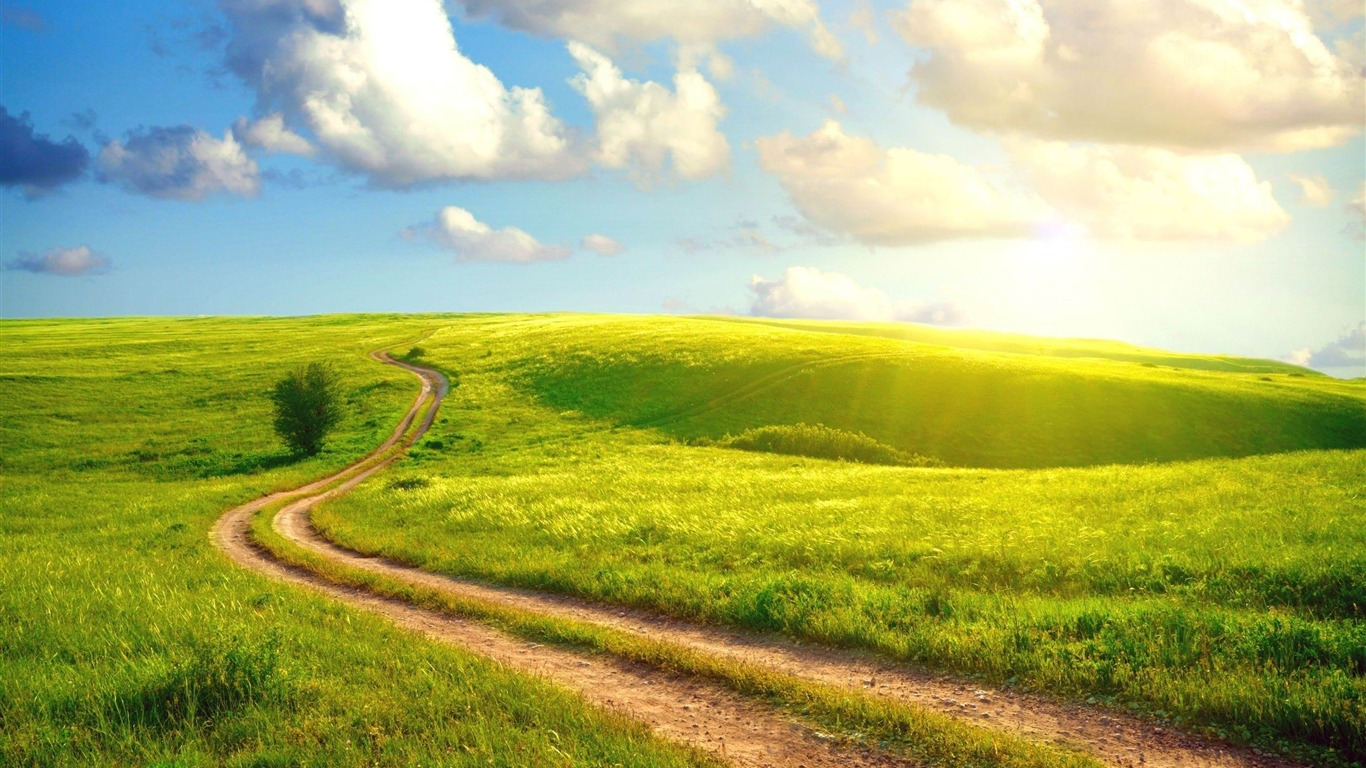 meadow-Microsoft_Windows_8_system_wallpaper