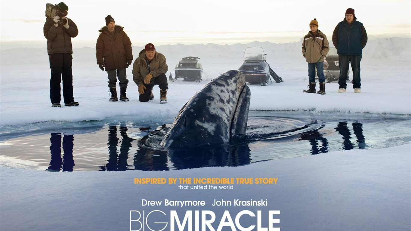 Big_Miracle_2012_Movie_HD_Desktop_Wallpapers