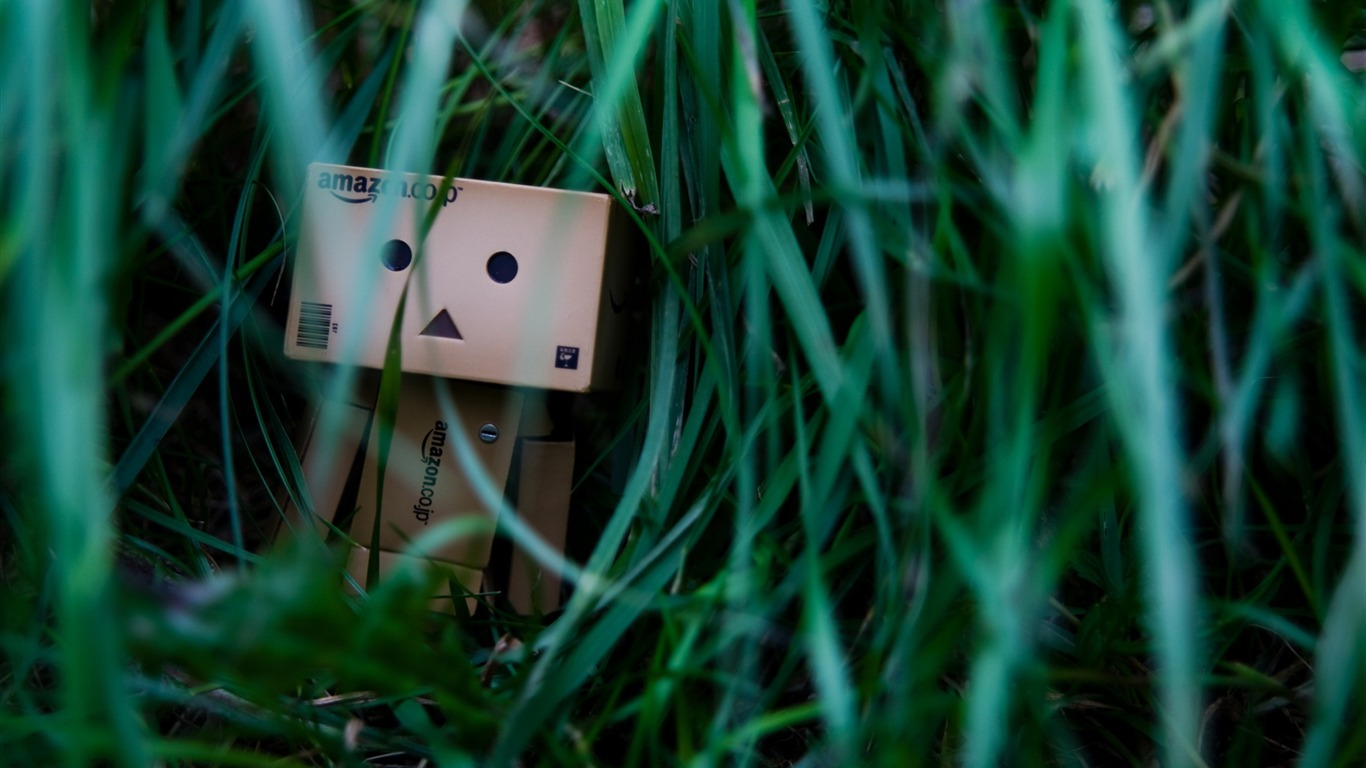 sometimes_its_lonely-Danbo_Photography_Wallpaper