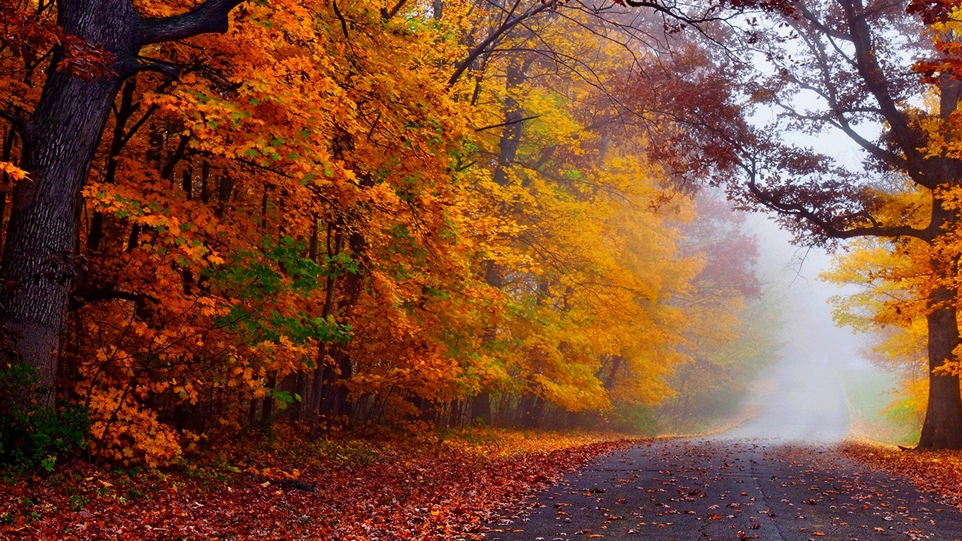 Autumn_Nature_Photography_HD_Wallpaper_11