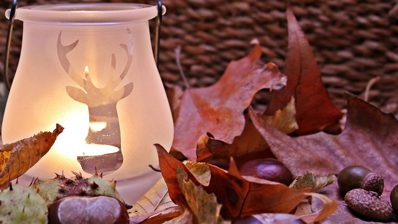 Candle_lamp_near_red_dried_leaf-Life_Photography_HD_Wallpaper