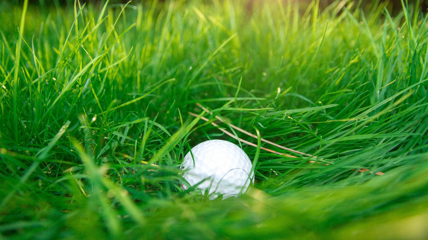 Golf_ball_green_grass-2017_High_Quality_Wallpaper