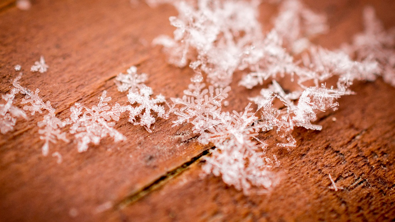 Winter_snowflake_closeup-Windows_10_Desktop_Wallpaper
