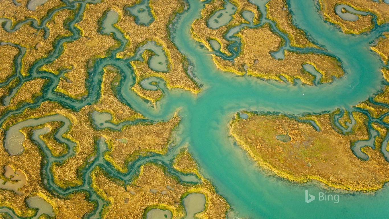 Essex_Aerial_view_of_salt_marsh_at_Abbotts_Hall_Farm-2017_Bing_Desktop_Wallpaper