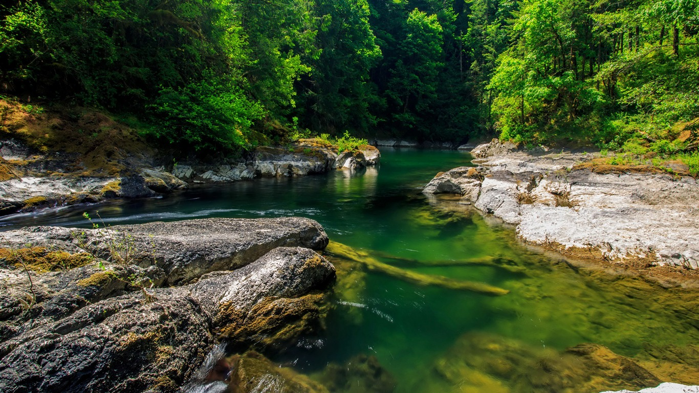 Mountain_forest_stream-Scenery_HD_Wallpapers
