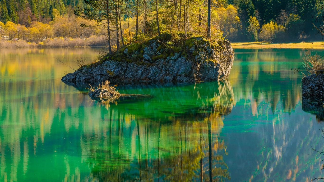 Scenic_view_of_lake_in_forest-Scenery_High_Quality_Wallpaper