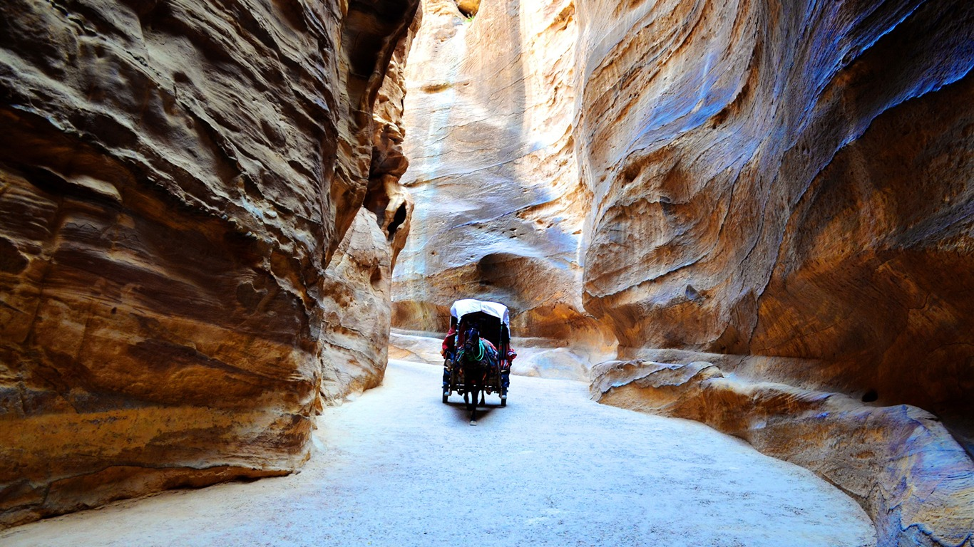 Canyon_petra_rocks_horse_Photo_HD_Wallpaper
