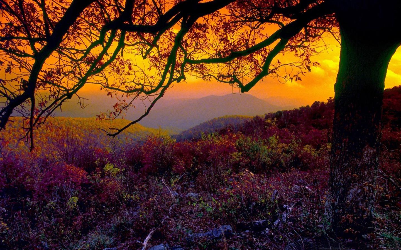 dusk autumn nature wallpapers 1440x900 download