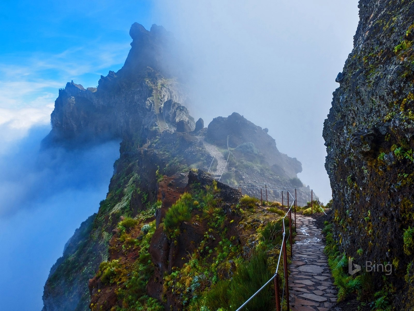 Portugal Mountain Trail In Madeira 2016 Bing Desktop