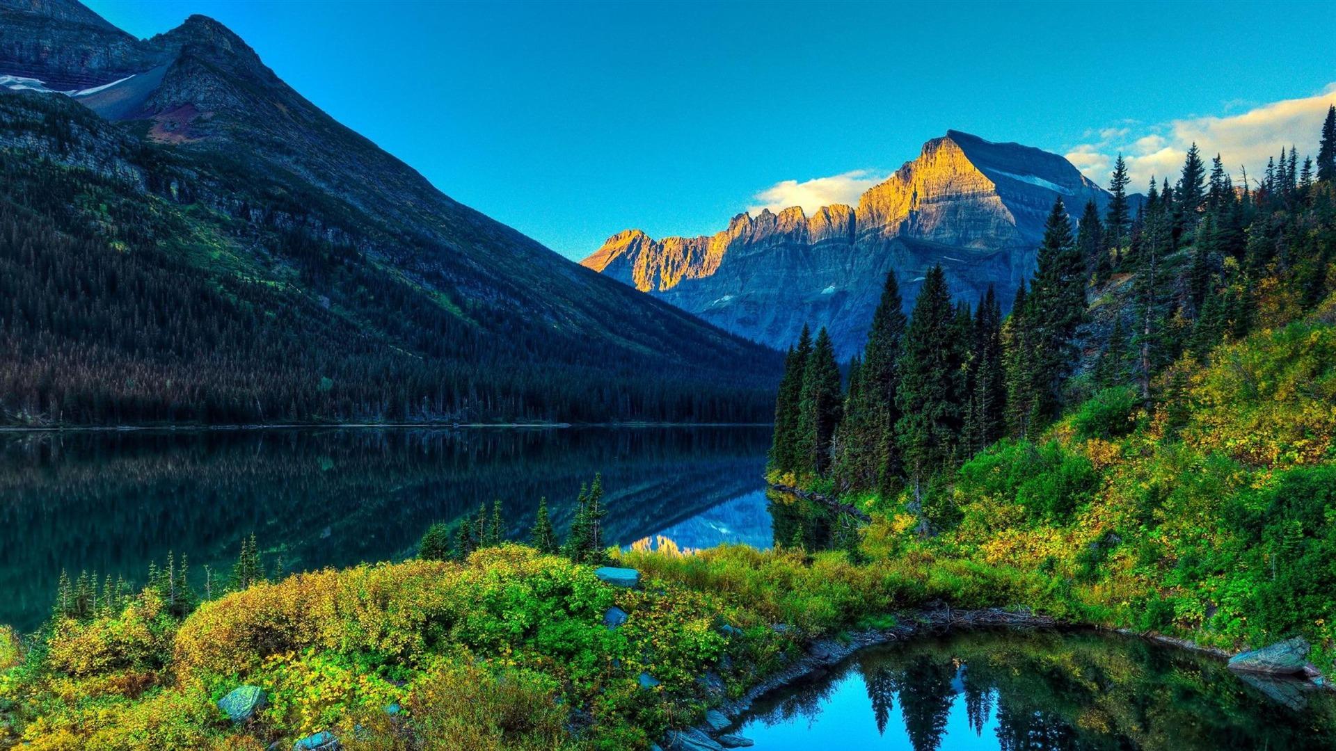 自然の画像 p1_34