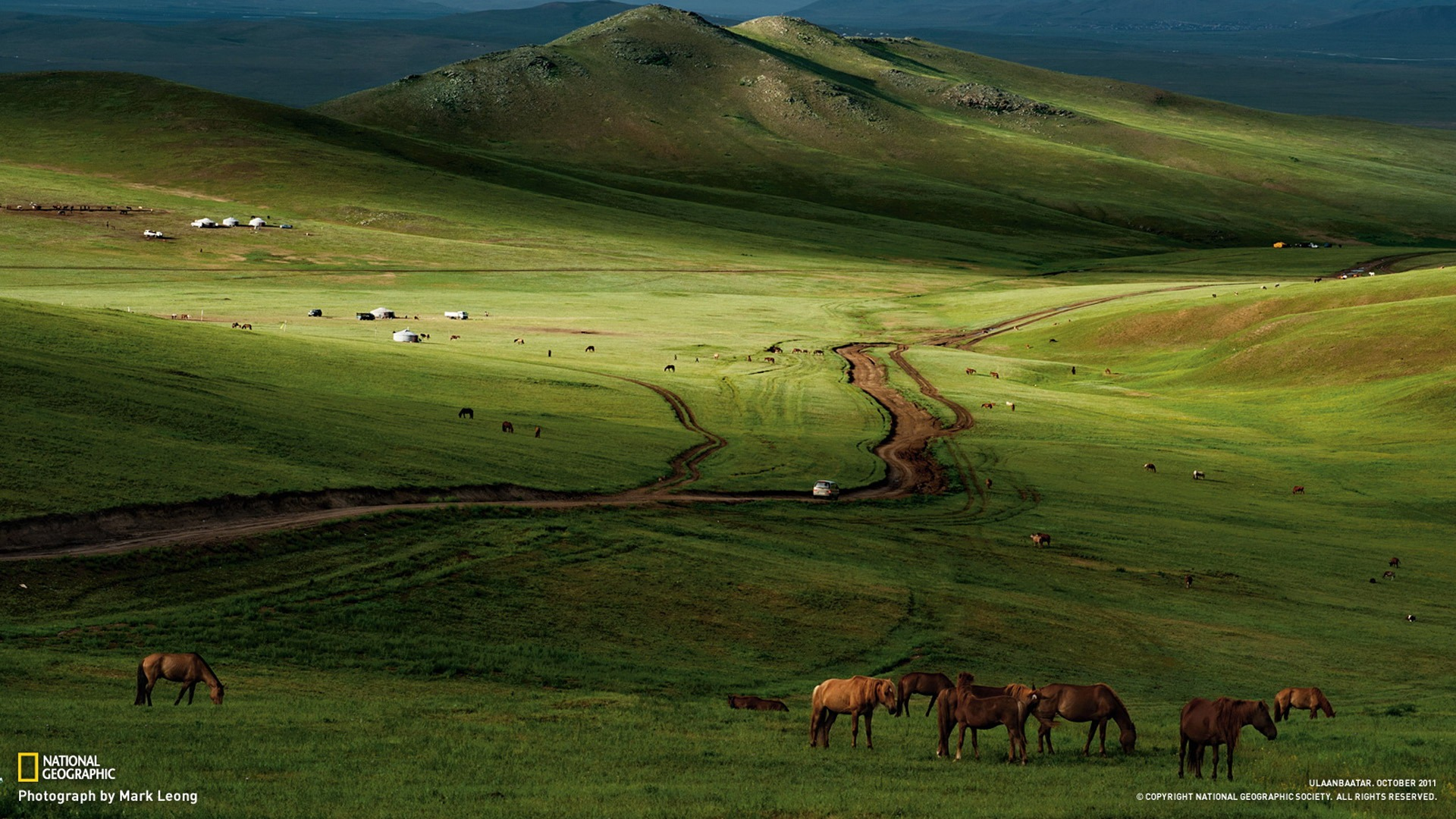 Horses Mongolian Steppe National Geographic Best Wallpapers