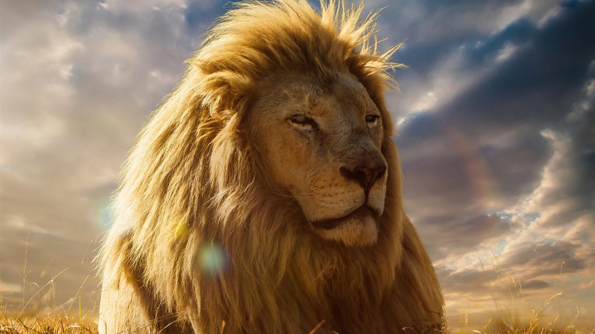 描述: 狮子王-2017电影壁纸 当前壁纸尺寸: 1920 x 1080