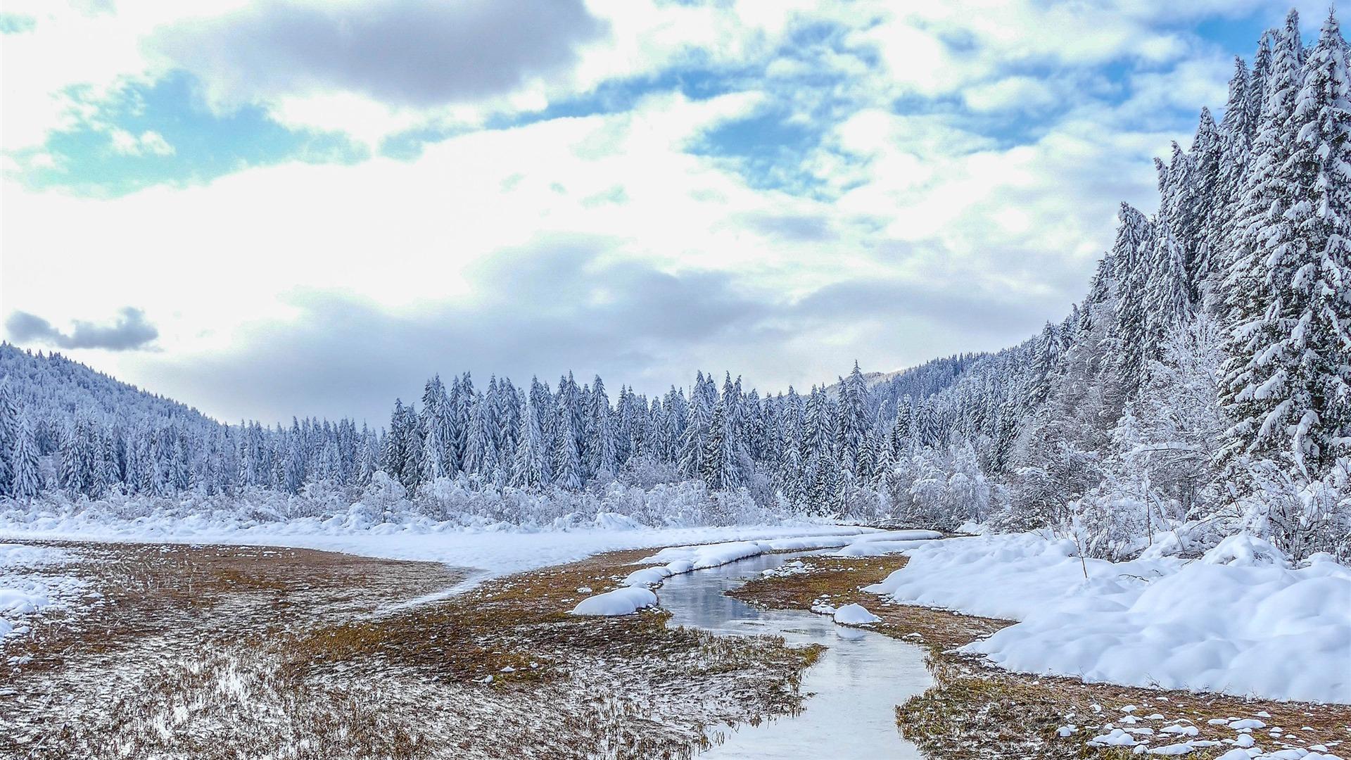 2018年,冬季,森林,河流,云杉,雪预览 10wallpaper Com