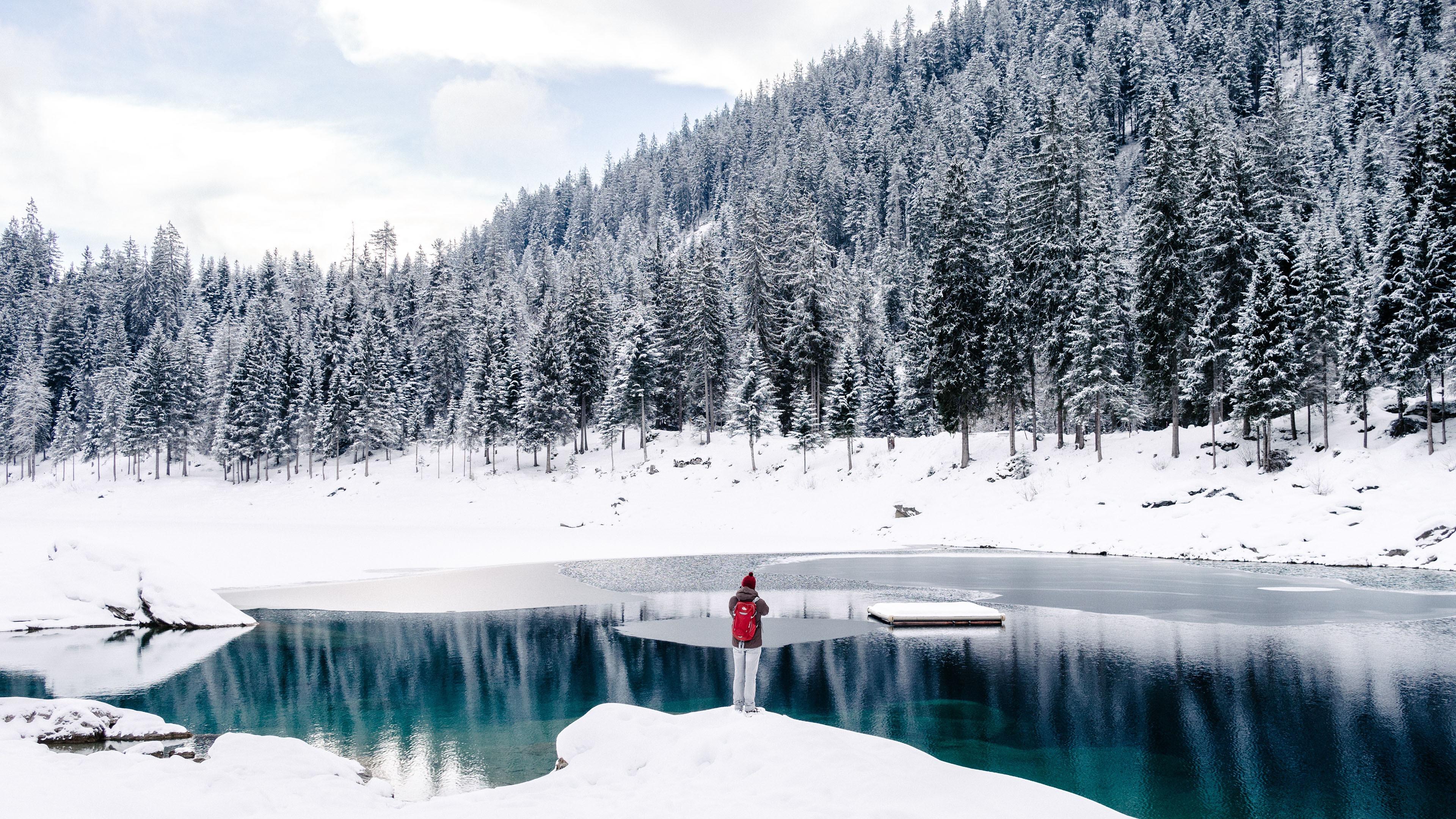 冬季_2018年,冷,冬天,松树,林,湖,摄影预览 | 10wallpaper.com