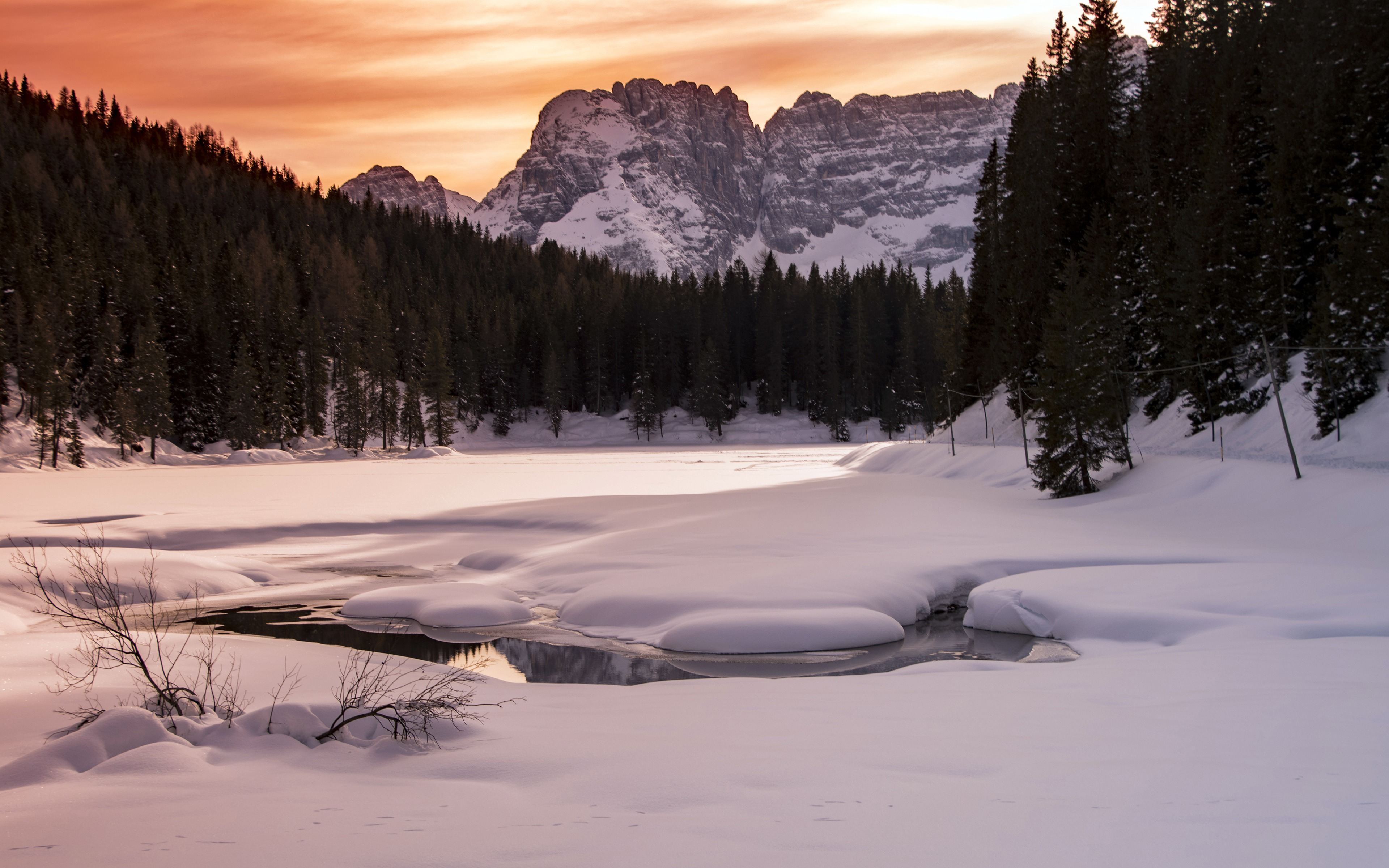 Winter jungle Alpine ice snow sunset - 3840x2400 wallpaper download