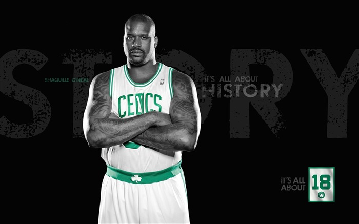 2010-11 NBA season Boston Celtics the desktop wallpaper - the new season lineup Views:7242