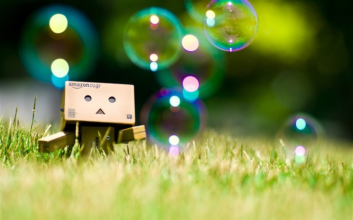 Danbo Danboard Widescreen Wallpapers Views:24065