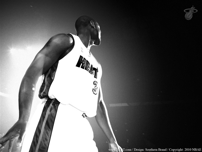 NBA Miami Heat wallpaper10-11 wade1 Views:7771