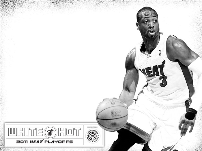 Miami Heat 2010-11 NBA season and playoffs team wallpapers Views:16978