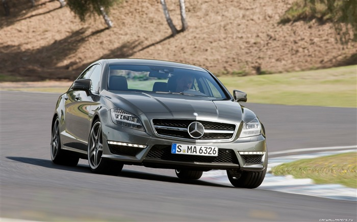 Mercedes-Benz CLS63 AMG - 2010 12 Views:6297