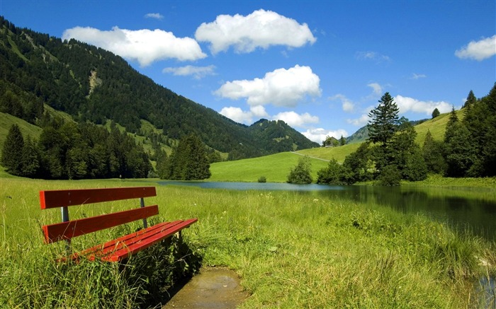 Photo Bench in country field Beauty of Nature Views:24455