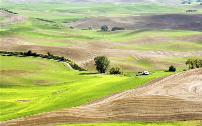 Photo Vast view of cultivated landscape Views:5425