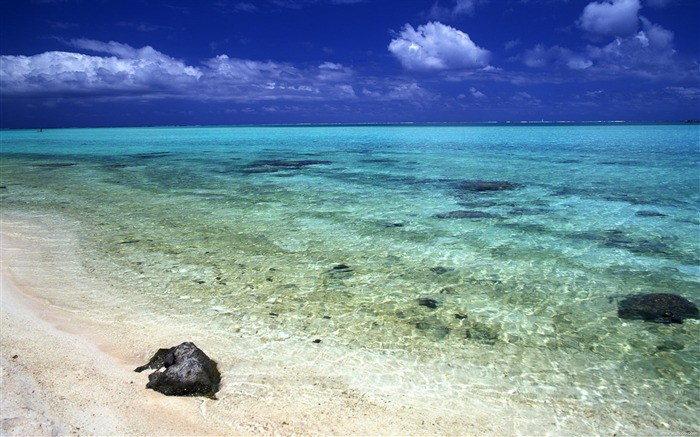 Tahiti clear water beach wallpaper Views:17008