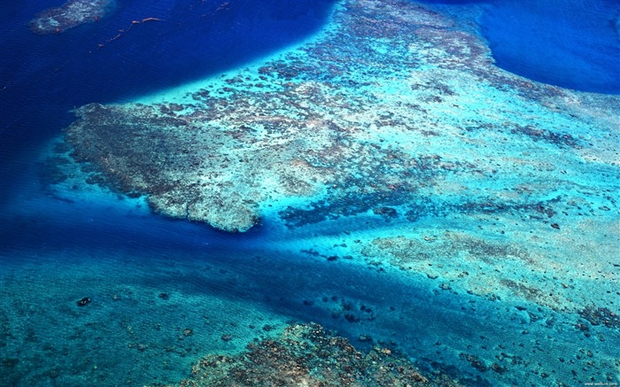 Tahiti coral reefs wallpaper Views:9448