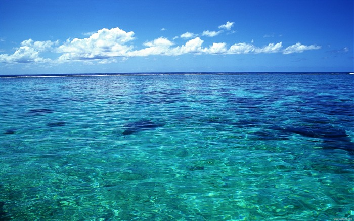 Tahiti crystal clear sea water wallpaper Views:124393
