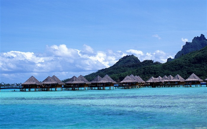 Tahitian hut wallpaper water Views:8519