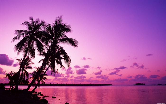 Tahiti Dream romantic tropical paradise wallpaper Views:43464