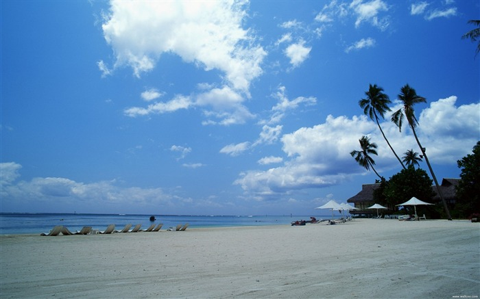 dazzling white sand beach wallpapers Views:10587