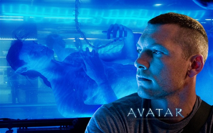 America Science Fiction Classic Movie - Avatar HD Wallpaper 10 Views:6465