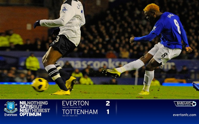 Everton 2-1 Spurs-Saha wallpaper Views:5863