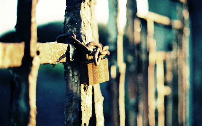Locked Gate Beautiful Lomo Photography Views:8374