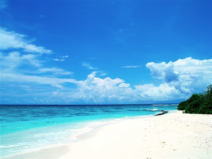 Blue honeymoon paradise - Maldives Wallpaper Views:37513