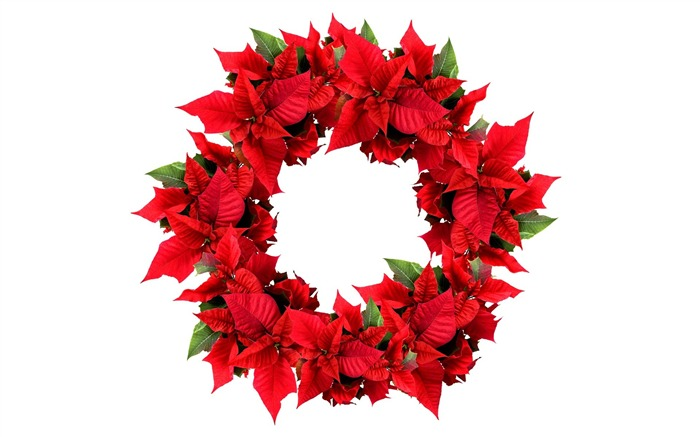 Picture- Christmas Wreath- Christmas Poinsettia Wreath Views:36097