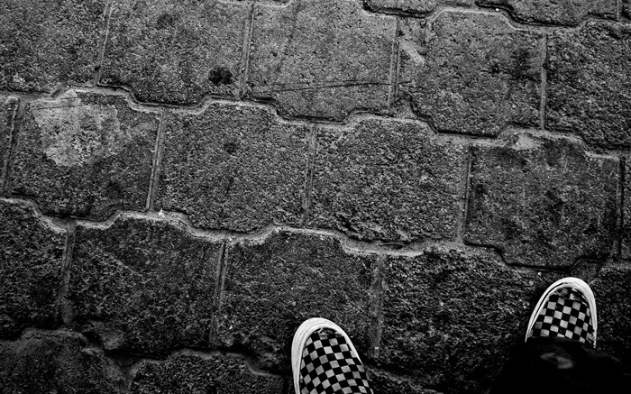 canvas shoes wallpaper Views:8552