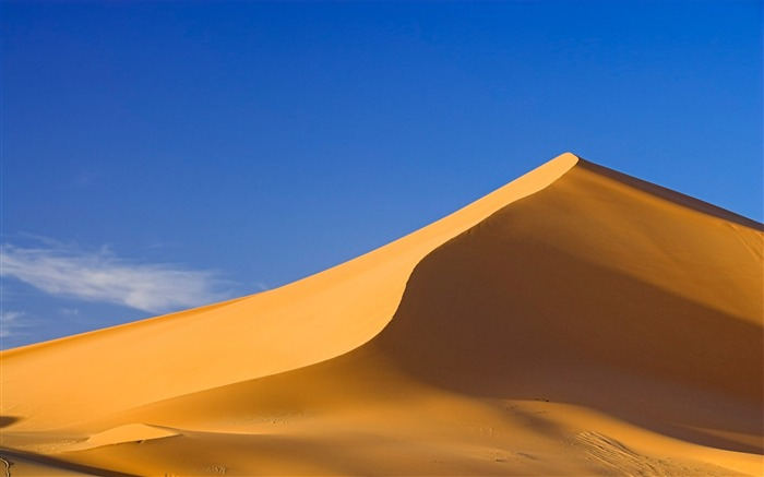 golden dunes-the worlds nature photography Views:6465
